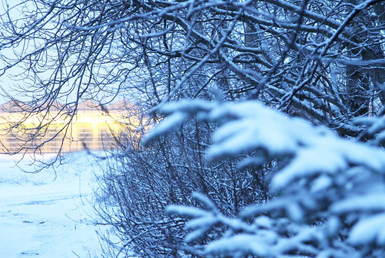 paysage en hiver en islande