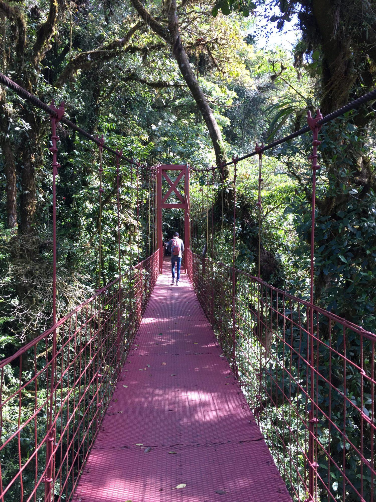pont suspendu monteverde