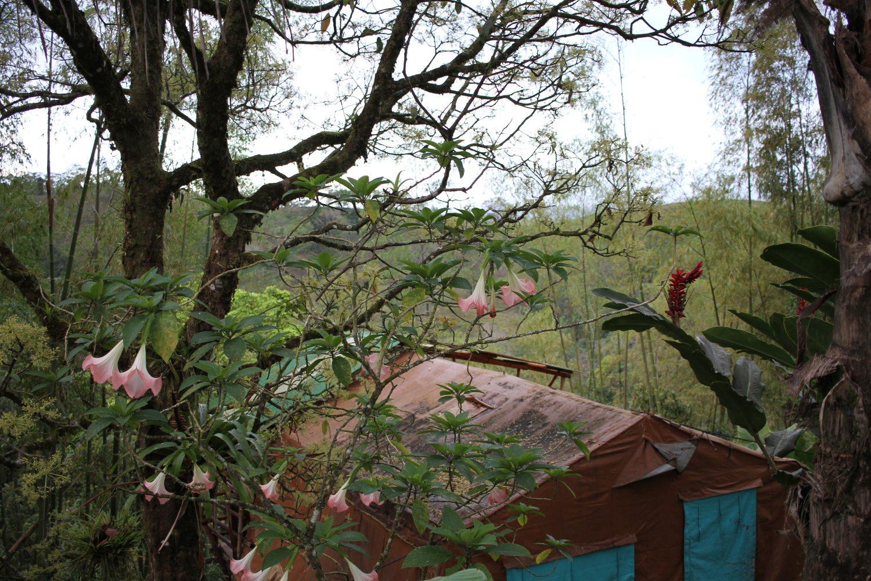 Tente de l'hôtel Essence Arenal au Costa Rica