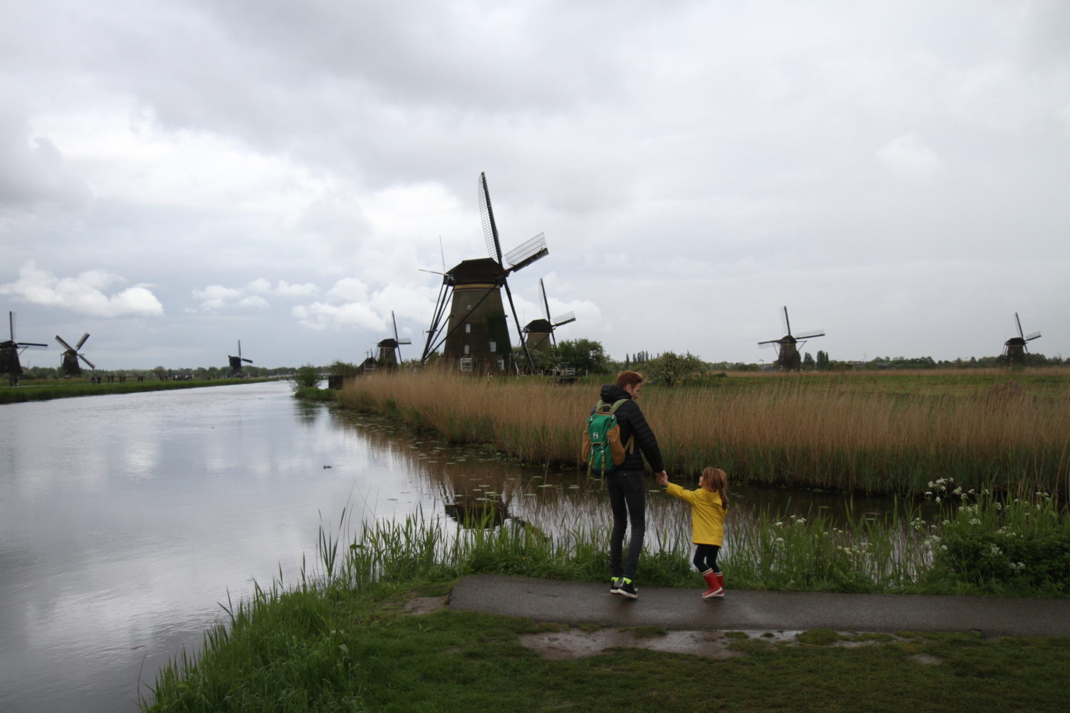 Kinderdijk les moulins en hollande