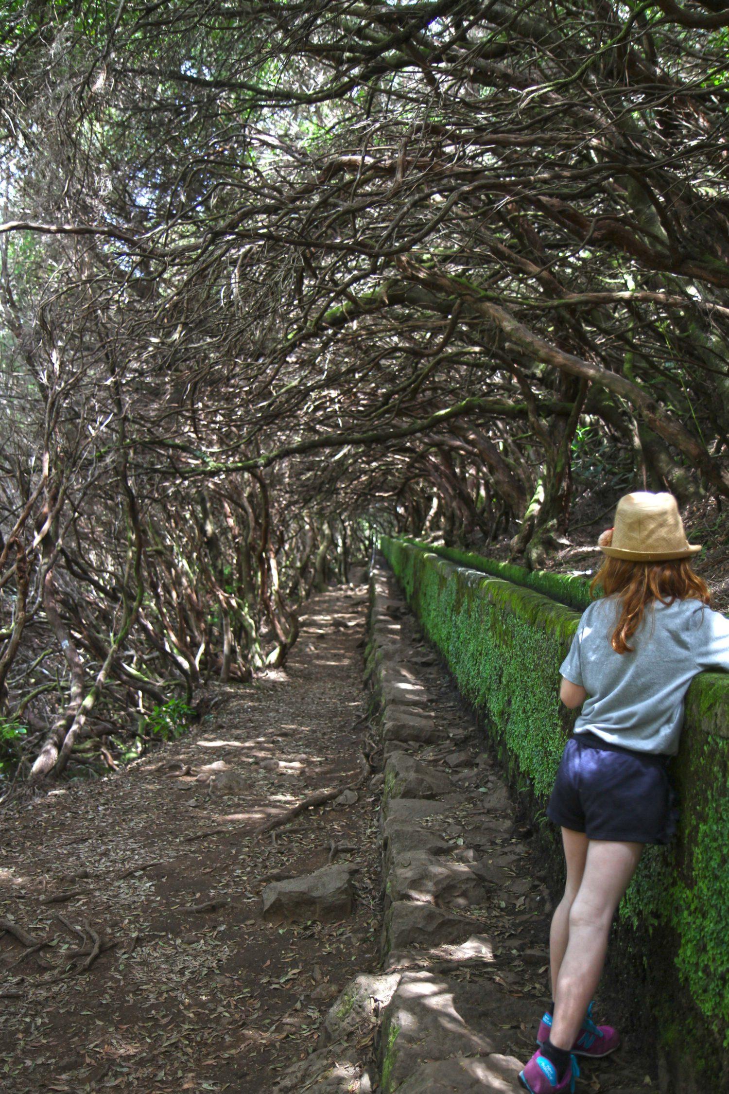 Madère randonnée de la levada das 25 Fontes