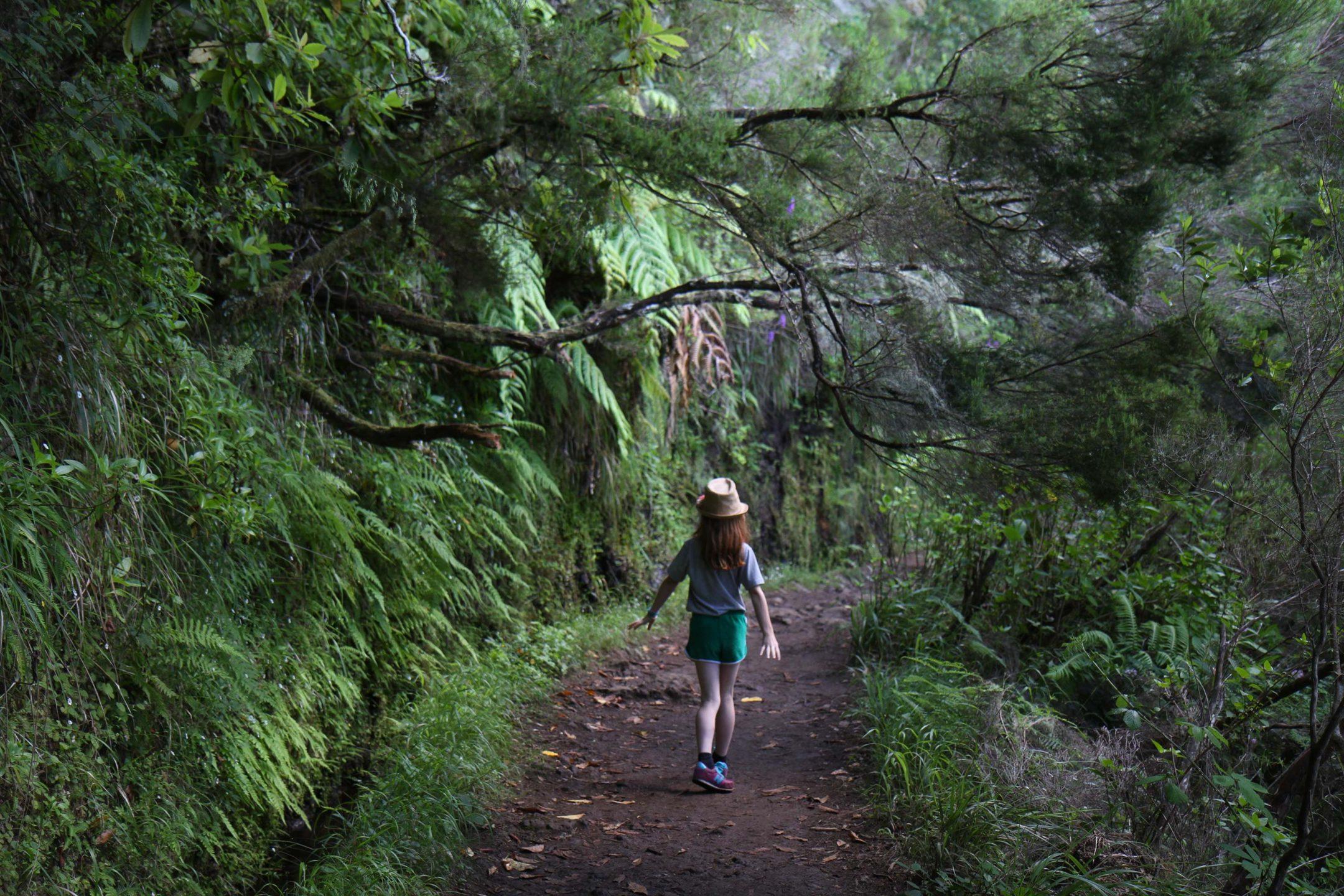 randonnée Caldeirao Verde