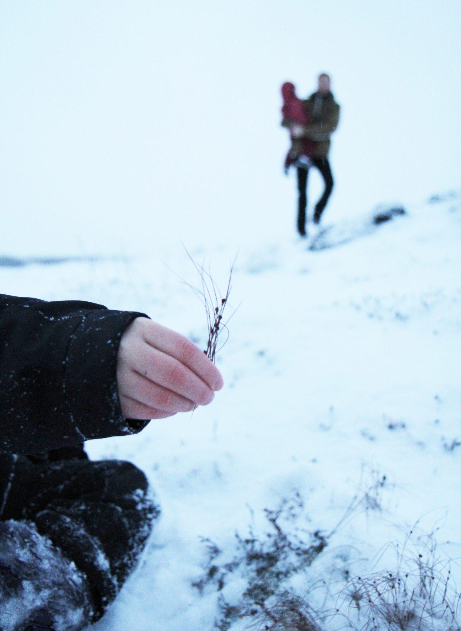 neige en islande
