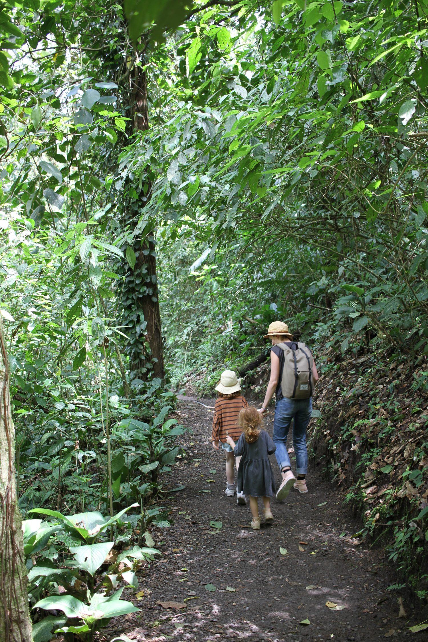 Balade dans la jungle d'arenal au costa rica