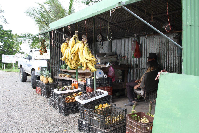 Vendeur de fruits au Costa Rica