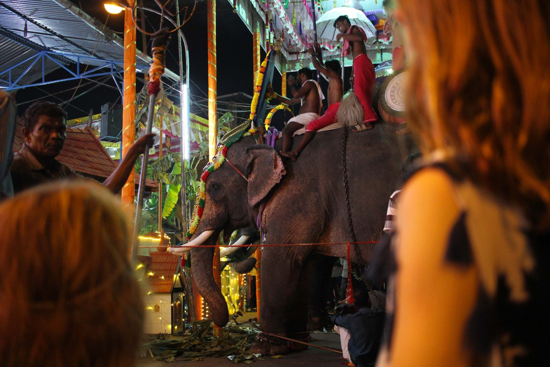 cochin fête hindou éléphants