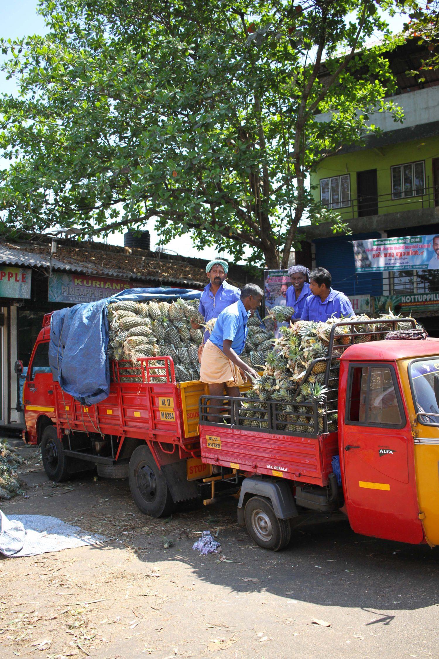 marché aux ananas Kerala