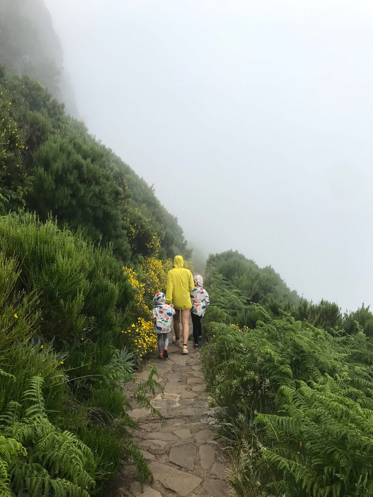 randonnée madère pico ruivo