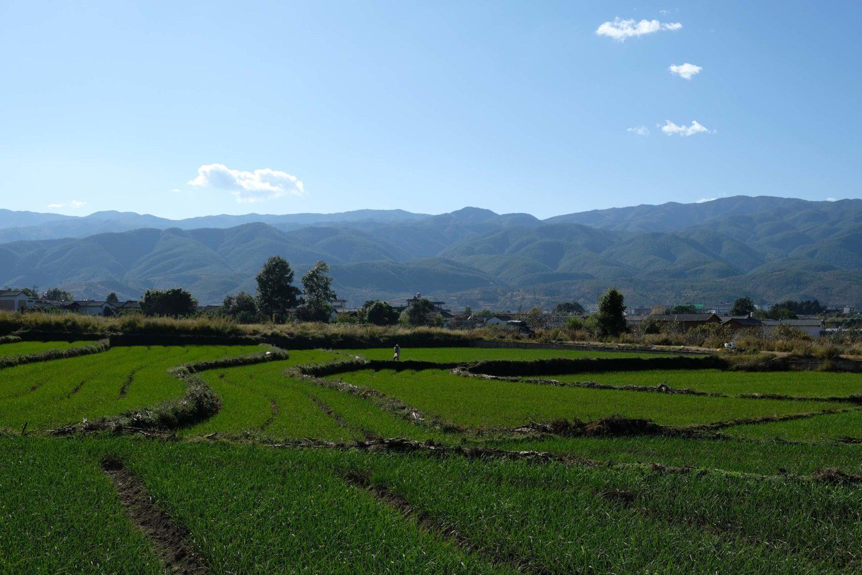 Shaxi Hualong Yunnan