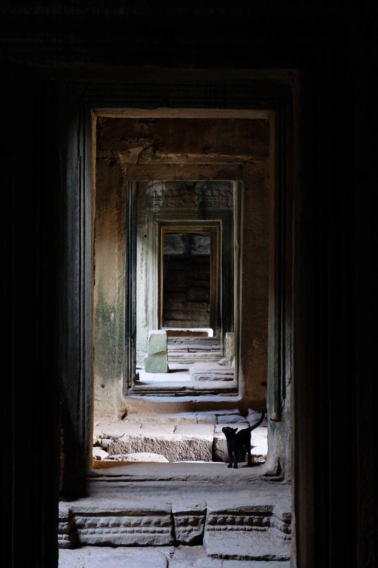 Bayon Siem Reap Cambodge