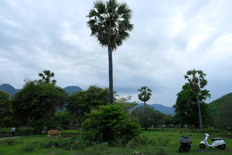 Pemuteran Bali voyage en famille