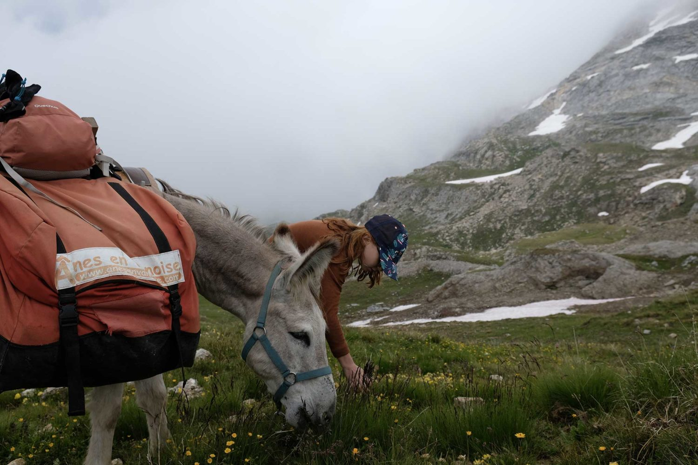 randonnée itinérante avec un âne en Vanoise