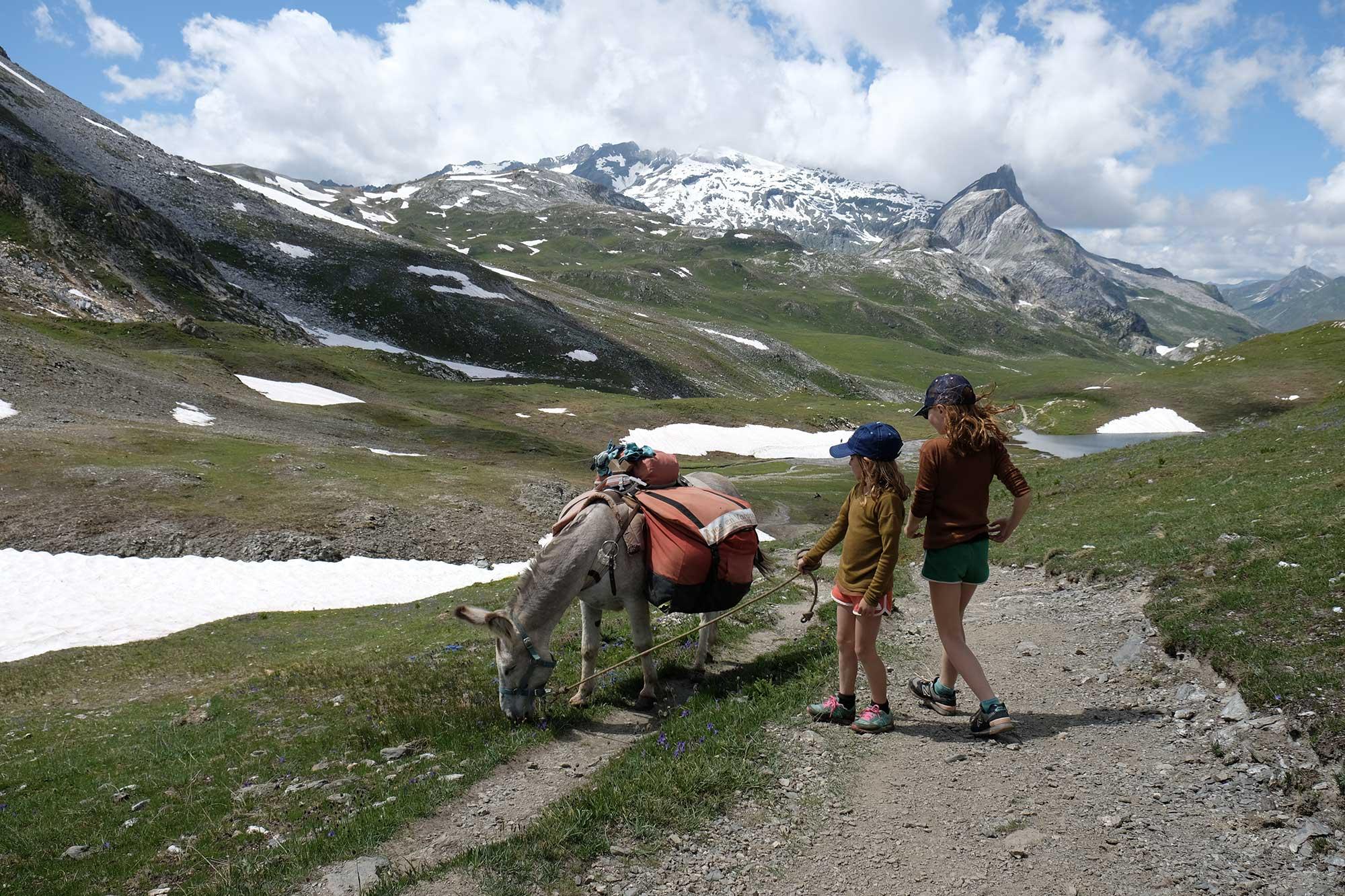 randonnée avec un âne col du Palet