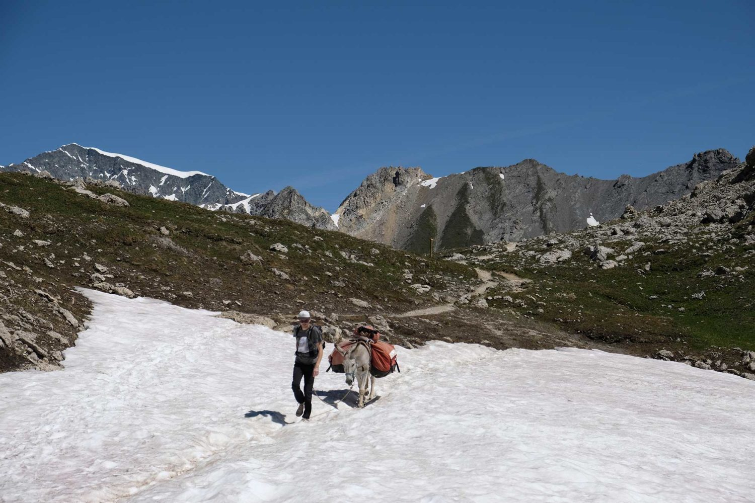 Névés Parce national de la Vanoise